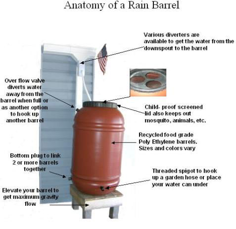 Anatomy of a Rain Barrel Diagram